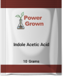 indole-acetic-acid-10